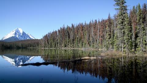 Mountain natural landscape