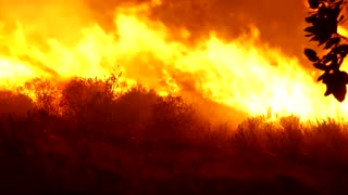 Firefighters battle roaring wildfires in France