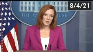 White House Briefing Aug 4, 2020