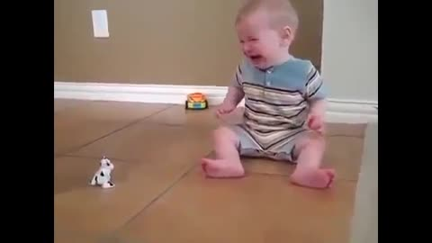 Funny Baby Scary With Baby Cow