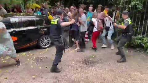 Manif anti confinement aux Pays-bas : Mattraquage en règle pour les gogoys battaves