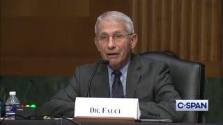 Rand Paul Exposes Fauci