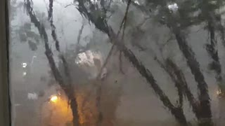 Storm Causes Tree to Fall and Break Window