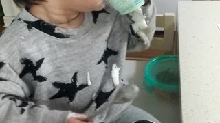 Video of a cute baby eating Yopla