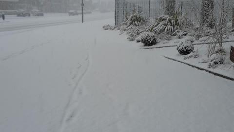 Wao snow ❄ 😍