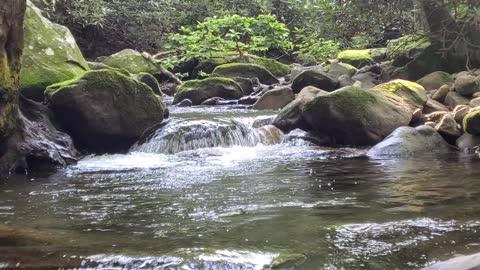 Relaxing Creek