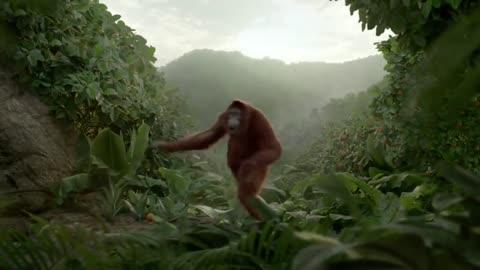 Dancing Orangutan