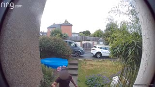 Dog Sends Delivery Driver Running Down Street