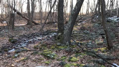 Dunnfield Creek, Delaware Water Gap, NJ