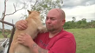Dogs Reunited With Owners After Tornadoes-Emotional Reunion