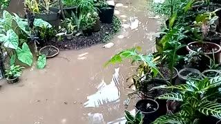 Flood during rainy session