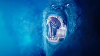 Godzilla vs Kong - Godzilla vs Kong fight scene