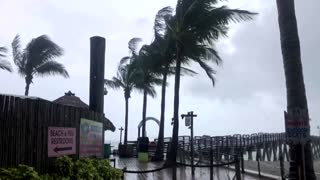 Elsa downgraded to tropical storm