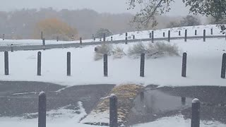 Snowy New Mexico