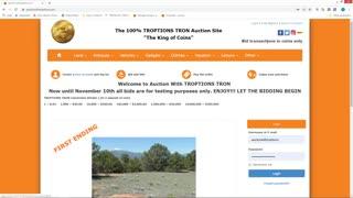 Troptions Auction