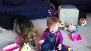 Babies laughing With Dogs