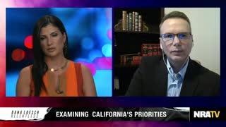 Dale Wilcox on Sanctuary Laws, Census Citizenship Questions