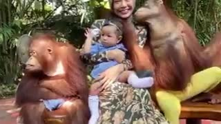 Family playing with monkey