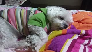 I want to sleep