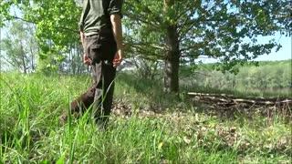field spaniel retrieving