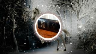 Holy Bible Revelation chapter 6