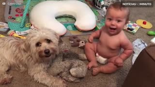 Bebê e cãozinho formam a amizade mais fofa que você ja viu