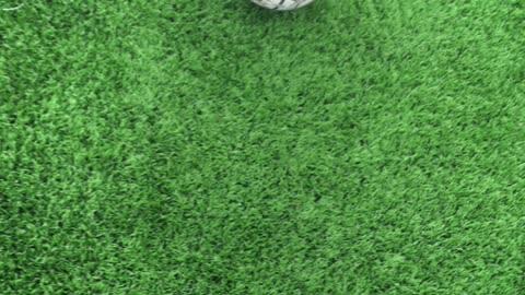 Foot balle 21