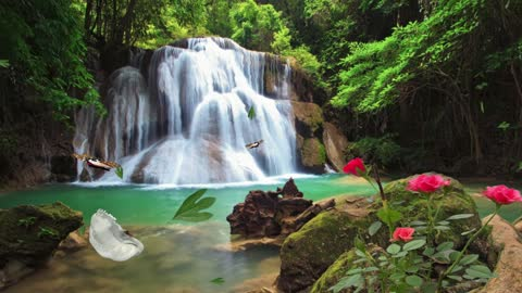 waterfall-The charm of nature - the sound of nature