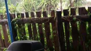 Heavy Rain Thailand