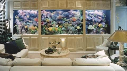 Aquarium interior Room. Original Design Ideas For The Most Beautiful Rooms