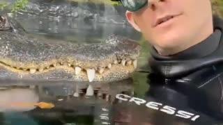 A man just enjoying with Crocodile like Friends